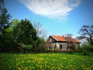 Villa Reglówka. Private house with the fireplace, terrace, garden and river