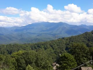 No Cleaning Fee . . . And Did I Mention the View?, Gatlinburg