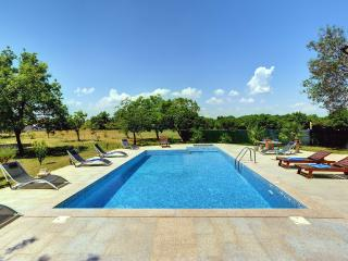 Luxury Villa***** in Nature With a Large Pool., Valtura