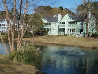 Lovely 2bdrm Townhome overlooking pond, North Charleston