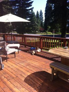 Back deck (dog and kid not included!)