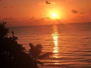 Caribbean Beachfront W/ Pool, Plasencia