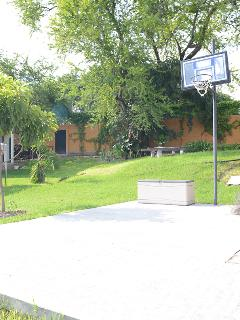 canasta de basket ball