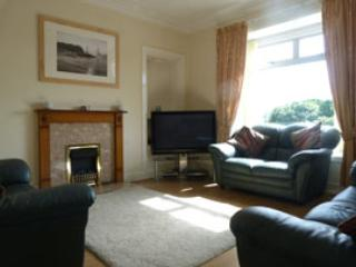 Main Lounge, flat screen TV, Freeview, DVD, electric fire,