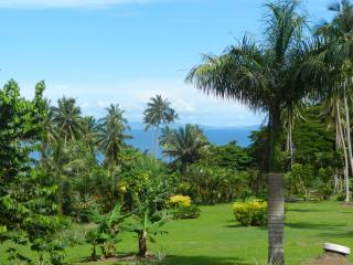 Bibi's Hideaway Fijian Bure, Matei