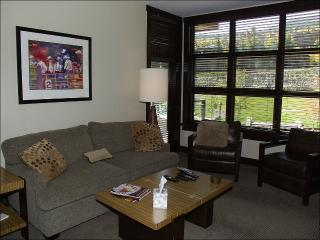 Hayden Lodge  - Views of the slopes and village (9418), Snowmass Village