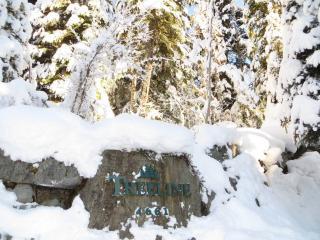 Treeline #27, Whistler