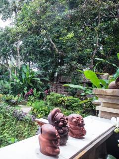 Sawo Apartment 1 View, Murni's Houses , Ubud, Bali