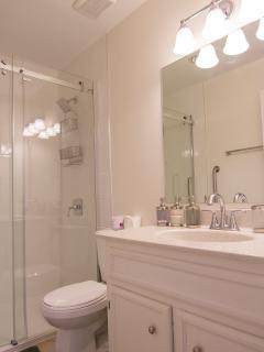 New Main Full Bathroom