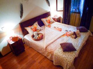 Apartments Senka: Dharma, Korcula Town