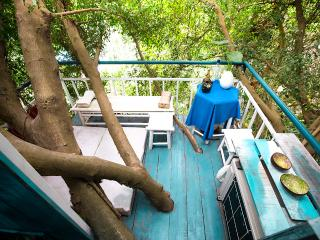 Dao Anh Khanh Sky Tree House Only One in Hanoi