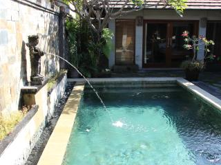 Oasis Villa- $70 - Stay 7 pay 6 in Feb & March, Sanur