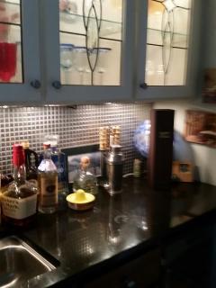Bar with wine fridge
