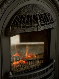 Lions' Loft Gas Fireplace