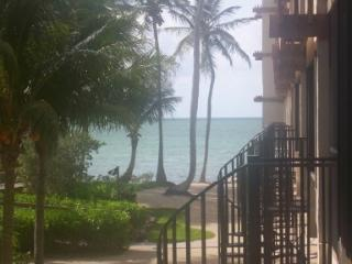 Oceanfront Islamorada Condo with Huge T-Dock