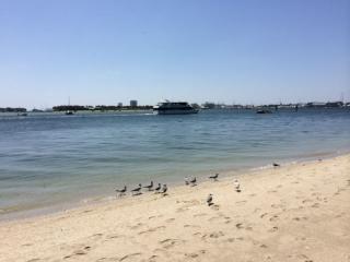 Maison mobile Riviera beach 5mn de la mer