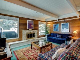 Cozy alpine chalet close to Dollar Mountain, Sun Valley Lake