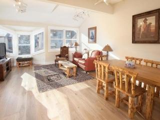 West Willow 5 - 2 Bd + Loft / 2 Ba Condo - Sleeps 6 - Remodeled and Located Near the Base of Lift 7 - Great Summer or Winter Location!, Telluride