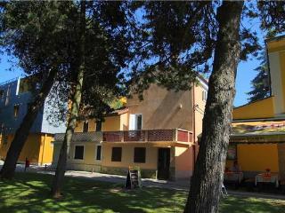 50958-Apartment Novigrad