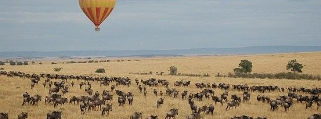 hot air balloon trip organized by Destiny Eco Camp mara