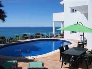 Casa Mono, villa with a WOW! factor view, La Herradura