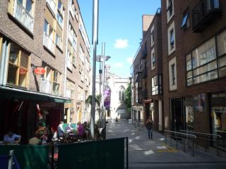 The Temple Bar Apartment