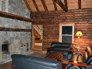 Rivefront Cozy Rustic Lodge, Bushkill