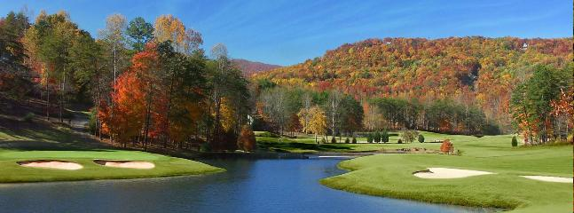 Play play a few holes- discounted green fee with lodging- golf cart included!