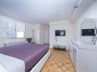 WONDERFUL 2 BEDROOM NEW YORK APARTMENT - 3, Long Island City