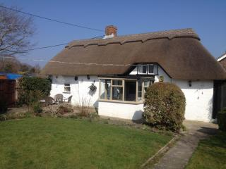 Thatched cottage, New Forest, luxurious & jacuzzi