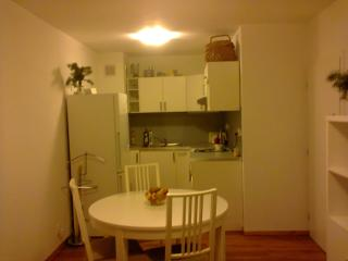 Small apartment  for a couple and baby, Praga