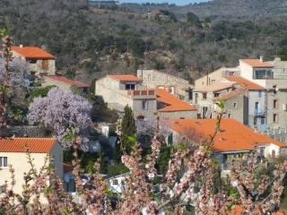 Le gîte, au centre, avec vue au-dessus des toits du village