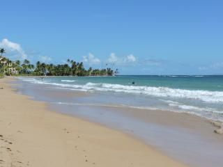 Best Beach and Location in Palmas, Ocean View