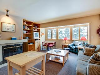 Cozy home at the base of Bald Mountain. Walk to the slopes!, Ketchum