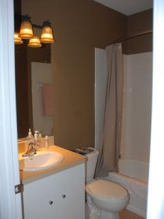 This is the main bathroom with hotel style shower rod