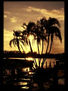 Yes, the Florida life is amazing and are condominium is located at an amazing location