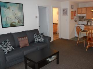 Lovely One Bdrm Suite min. to Blue & Lake, Collingwood