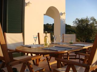 Anemos Villa-enjoy a relaxing and rural experience, Réthymnon