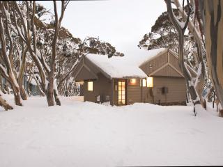 Dargo Chalet - Mount Hotham (Large Room), Hotham Heights