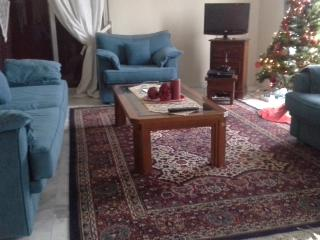 BIG HOUSE   95 (sq ,m)   17,7 min from  METEORA., Trikala