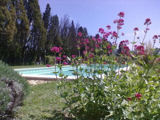 Mazet de Nicolaï avec piscine privée, Saint-Rémy-de-Provence