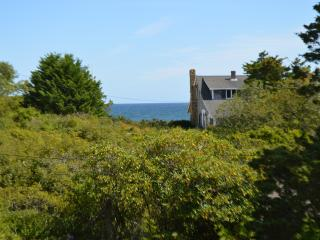 4 Minute Walk to Nauset Beach, Ocean View