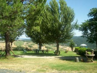 Spicchiaiola Hills Apt Alloro -  Volterra Tuscany