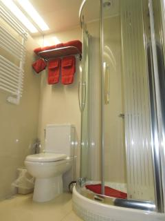 Well equipped bathroom: shower, toilets, bidet shower, towel warmer and more...