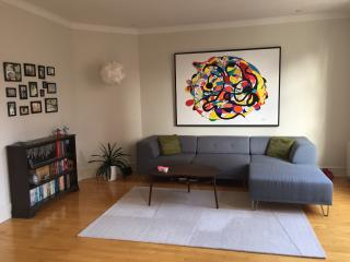 Spacious flat in trendy Vesterbro, Copenhagen