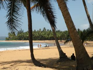 Want a warm winter? Visit Luquillo Hidden Oasis—Stay 4 nights, get 1 free