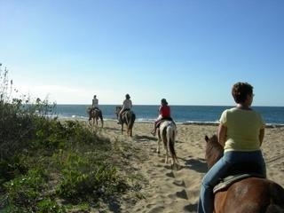 Tropical Trail Rides ~ playa 2 paseos diarios ~ 5 minutos a pie de la casa