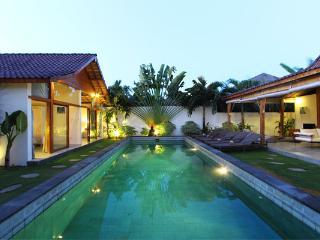 Elegant Tropical & Modern Villa Central Seminyak