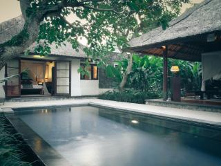 1 Bedroom Private Pool VIlla Kayumanis Ubud - 3, Sayan
