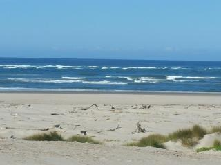 Oceania Beach Cottage. Oceanfront amazing views., Waldport
